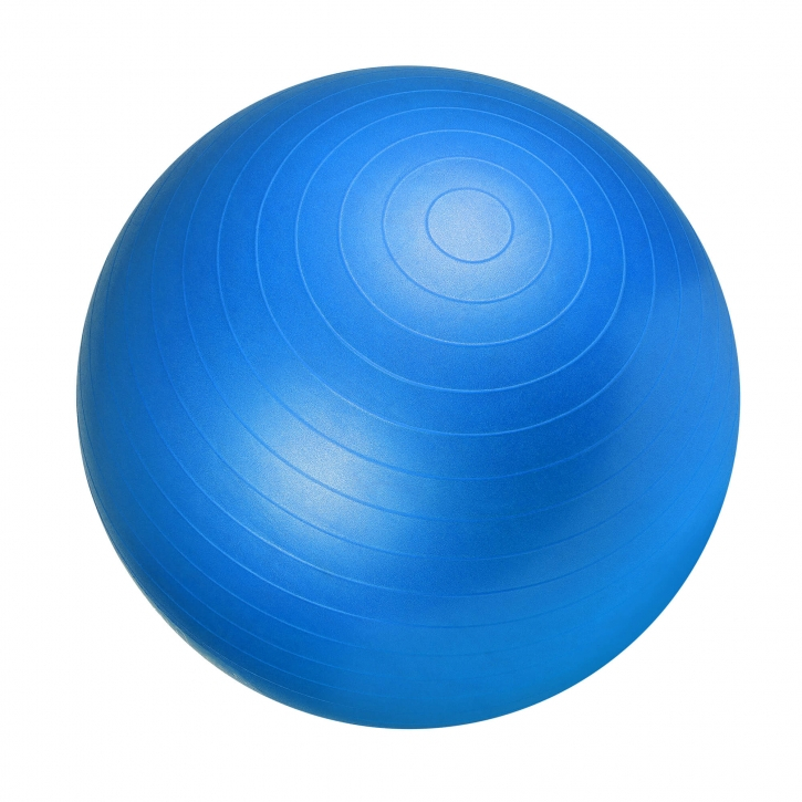 Gym Fitness Ball / Swissball Blue 55 cm