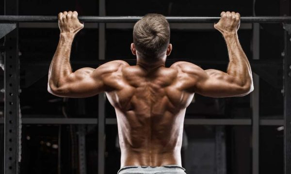 Building strong back muscles